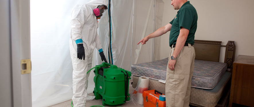 Laredo, TX mold removal process